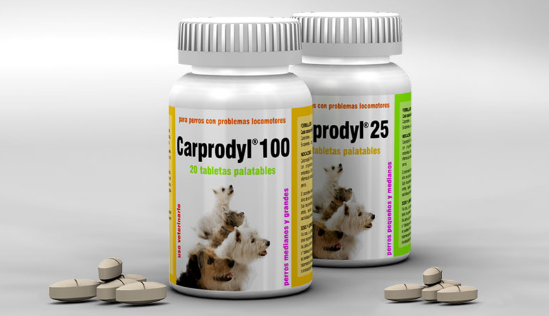 antiinflamatorio-carprofeno-veterinario-02